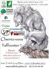 Affiche Loup Blanc 2015